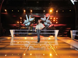 the voice set